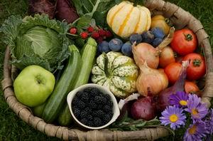 organic and natural food